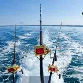 Qu'est-ce qui est semi-rigide pour la pêche en mer?