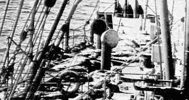 Où sont les corps du Titanic?